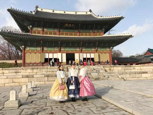 Du lịch miễn phí Hàn Quốc không cần visa - Ảnh 1.