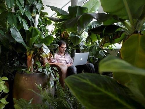 Văn phòng khác người của những công ty sáng tạo nhất thế giới - Ảnh 11.