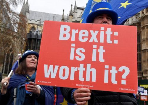 Người chống Brexit mỗi ngày - Ảnh 1.