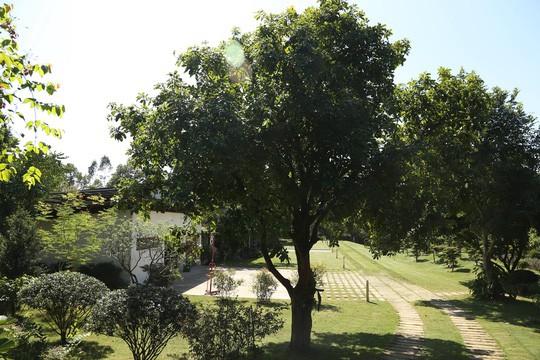 Hà Nội lại có chỉ đạo mới việc cưỡng chế 18 công trình vi phạm đất rừng Sóc Sơn - Ảnh 2.