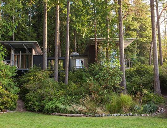 Biệt thự 60 năm giữa rừng gây choáng vì đẹp và hiện đại - Ảnh 3.