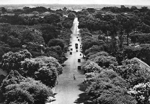 Năm đại lộ đầu tiên của Sài Gòn xưa - Ảnh 3.
