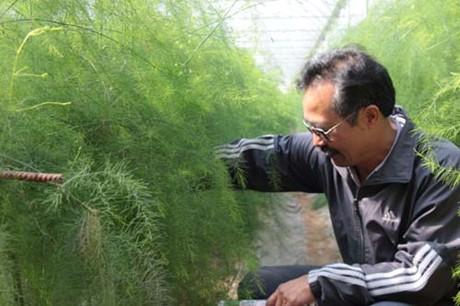 Nhà nông thời nông nghiệp công nghệ cao - Ảnh 1.