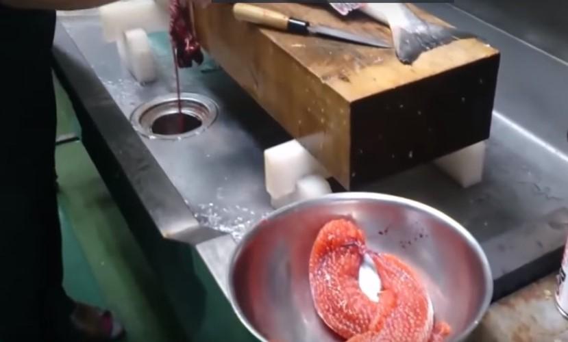 Cận cảnh thu hoạch trứng cá hồi siêu đắt ở Nhật Bản - Ảnh 5.