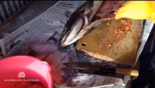 Cận cảnh thu hoạch trứng cá hồi siêu đắt ở Nhật Bản - Ảnh 6.