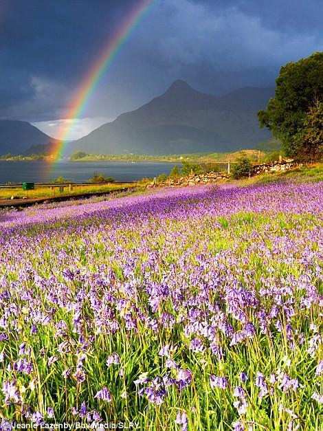Khám phá Scotland qua những bức ảnh tuyệt đẹp - Ảnh 12.