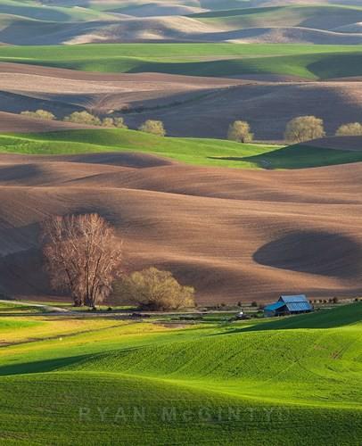 Vùng đất có những thảm cỏ đa sắc màu tuyệt đẹp - Ảnh 5.