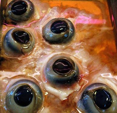 Hú hồn mắt cá ngừ đại dương: Không can đảm đố dám ăn - Ảnh 1.