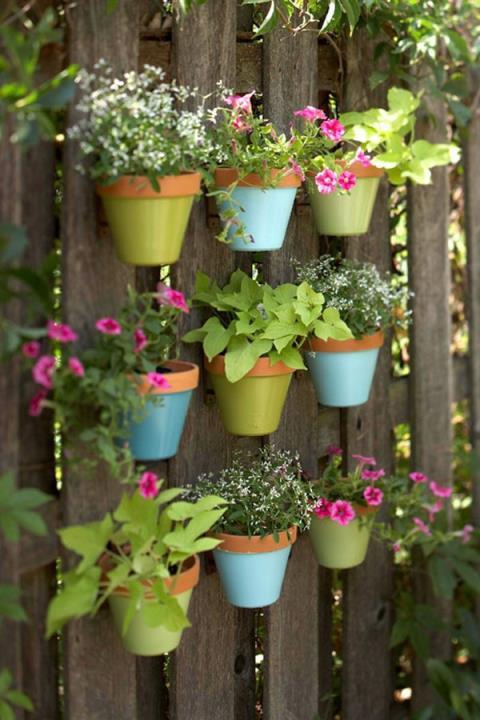 Khu vườn thơm ngát hương hoa, rau củ của Bằng Kiều - Ảnh 19.