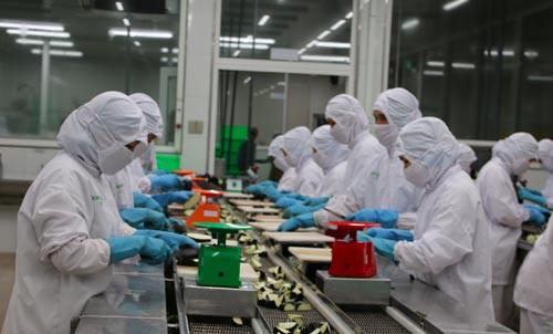 TP HCM có mức lương trung bình cao nhất cả nước - Ảnh 1.