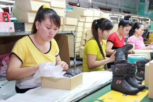 Không có DN giày Việt nào trong chuỗi Nike, Adidas… - Ảnh 2.