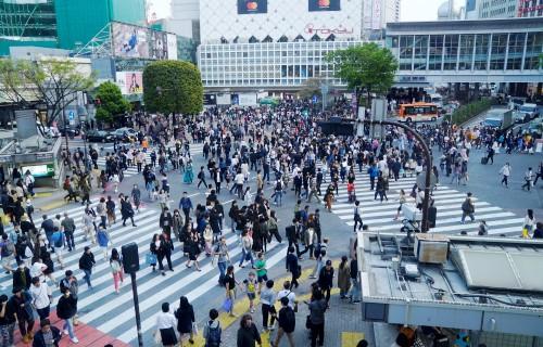 Các bước xin visa du lịch Nhật Bản cho người làm tự do - Ảnh 2.