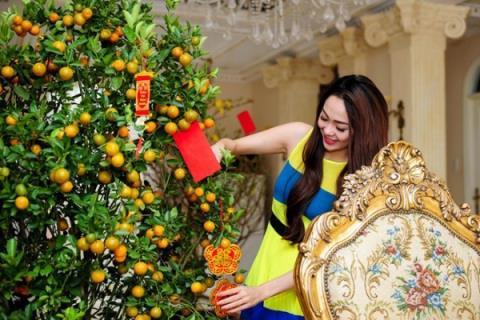 Biệt thự triệu đô đẹp như lâu đài của ca sĩ Minh Hằng - Ảnh 7.