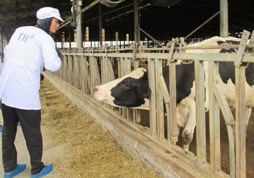 Gỡ khó cho doanh nghiệp nông nghiệp công nghệ cao - Ảnh 1.