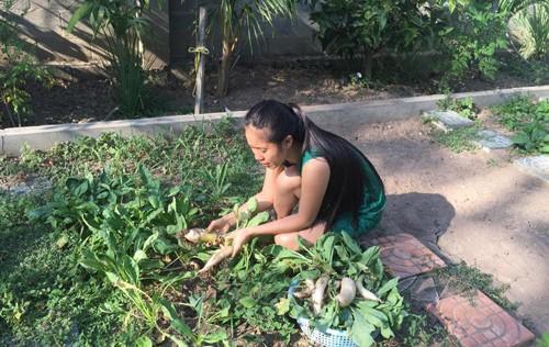 Phát thèm khu vườn sai trĩu quả của diễn viên Lê Phương - Ảnh 1.
