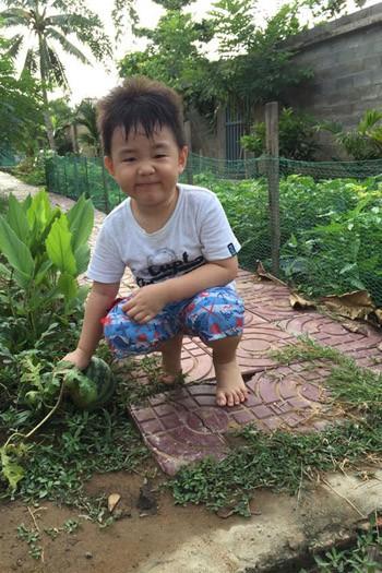 Phát thèm khu vườn sai trĩu quả của diễn viên Lê Phương - Ảnh 12.