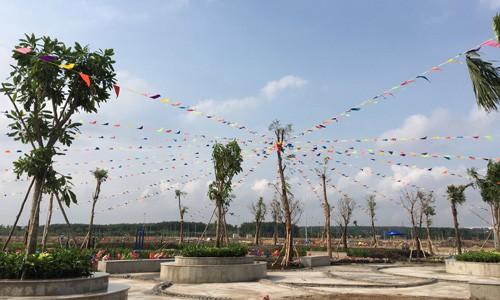 Giá đất Đồng Nai, Long An nổi sóng theo cơn sốt đất Sài Gòn - Ảnh 1.