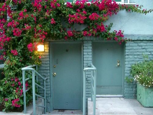 Chết lịm trước những ngôi nhà cổng hoa giấy đẹp tuyệt - Ảnh 7.
