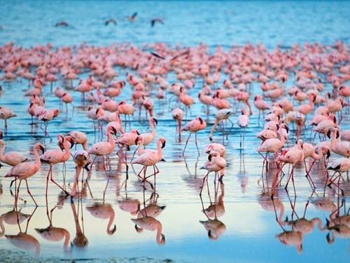 Chiêm ngưỡng những hồ nước đẹp nhất thế giới - Ảnh 4.