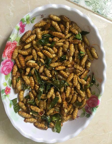 Ngã bổ ngửa với đặc sản côn trùng vùng cao Tây Bắc - Ảnh 1.