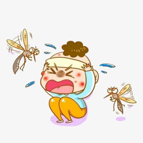 Bảo vệ con trẻ trước bệnh lây truyền từ muỗi trong mùa mưa - Ảnh 1.