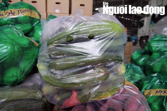 Cận cảnh hơn 40 tấn hoa, rau Đà Lạt gửi tặng Trường Sa - Ảnh 6.