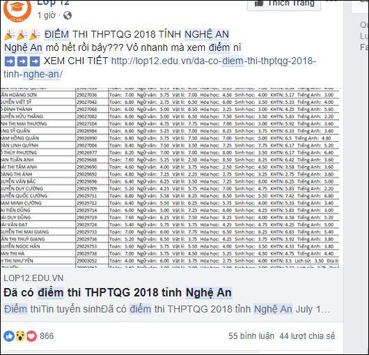 Lộ điểm thi THPT quốc gia tỉnh Nghệ An? - Ảnh 4.
