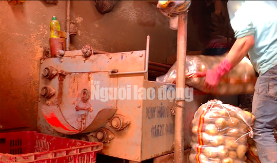 VIDEO điều tra: Đường đi nông sản Trung Quốc nhái Đà Lạt - Ảnh 5.