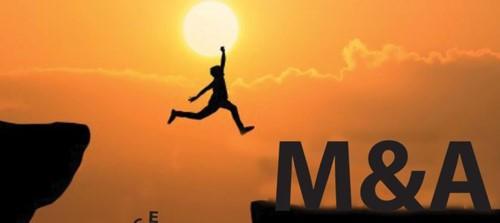 """M&A bất động sản: Nhận diện nguy cơ """"hụt"""" thương vụ - Ảnh 2."""