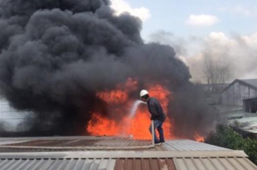 Cơ sở sản xuất, kinh doanh gỗ xem nhẹ phòng cháy - ảnh 1
