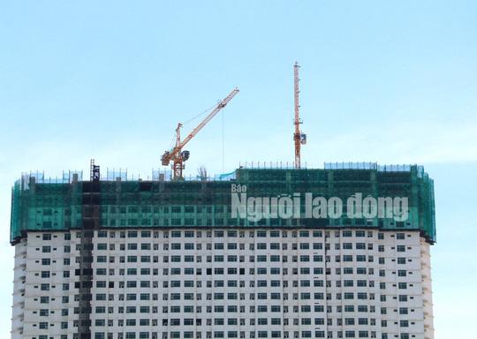 Xem Mường Thanh Khánh Hòa đang cắt ngọn - Ảnh 10.