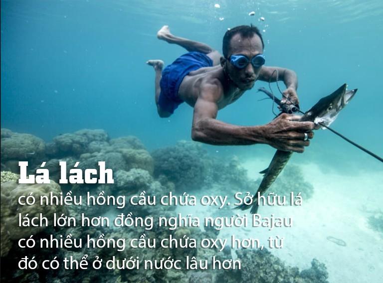 [eMagazine] Giải mã Người cá Bajau - Ảnh 2.