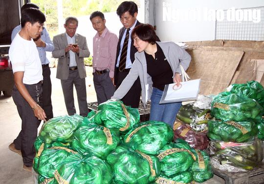 Cận cảnh hơn 40 tấn hoa, rau Đà Lạt gửi tặng Trường Sa - Ảnh 2.