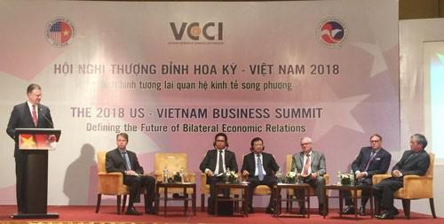 Doanh nghiệp Mỹ tăng cường đầu tư vào Việt Nam - Ảnh 1.