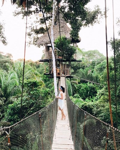 Những ngôi nhà trên cây tuyệt đẹp ai cũng muốn sống thử - Ảnh 12.