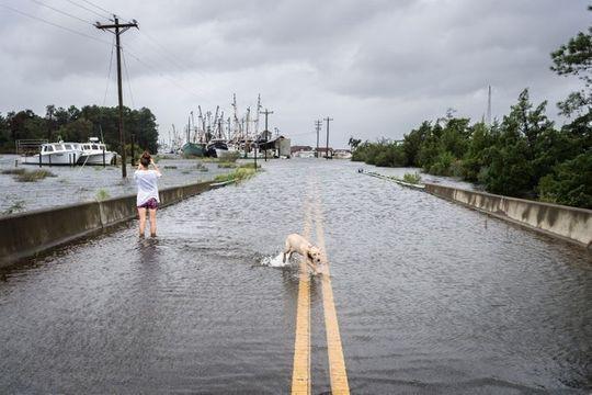 Philippines mở kho gạo bị tịch thu cứu trợ dân trong siêu bão Mangkhut - Ảnh 6.