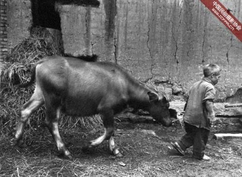 Bí ẩn về ngôi làng người lùn tại vùng cao Trung Quốc - Ảnh 5.