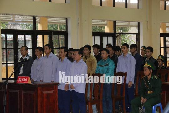 Vụ phá rừng pơ mu: Cựu phó Đồn Biên phòng cửa khẩu Nam Giang hầu tòa - Ảnh 2.