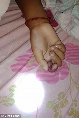 Hổ mang chui vào giường, bé gái 9 tuổi mất mạng - Ảnh 2.