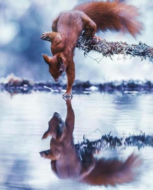 Chẳng cần photoshop, thiên nhiên cũng có thể tự tạo ra những 'siêu phẩm' như thế này - Ảnh 10.
