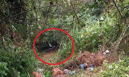 Bất ngờ phát hiện chiếc ôtô dưới vực sâu có 1 phụ nữ tử vong bên trong - Ảnh 1.