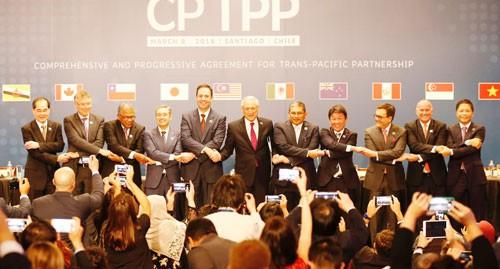 Thuốc giải CPTPP - Ảnh 1.