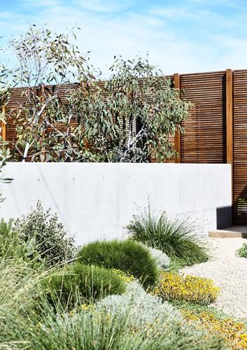 Ngôi nhà tuyệt đẹp kết hợp giữa bê tông và gỗ - Ảnh 2.