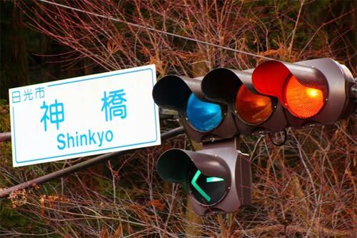 Những điều kỳ lạ chỉ tồn tại ở Nhật Bản - Ảnh 2.