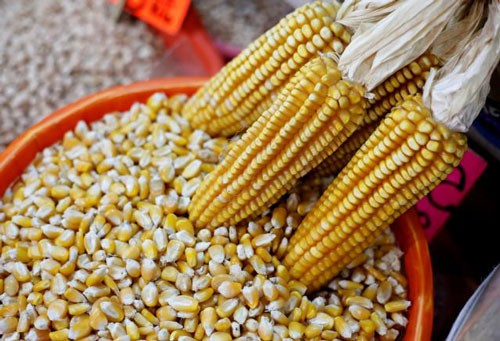 Vụ gian lận thực phẩm organic gây rúng động ở Mỹ - Ảnh 1.