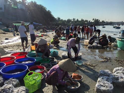 Chợ hải sản tính tiền theo thau ở Bình Thuận - Ảnh 1.
