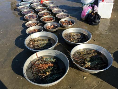 Chợ hải sản tính tiền theo thau ở Bình Thuận - Ảnh 3.