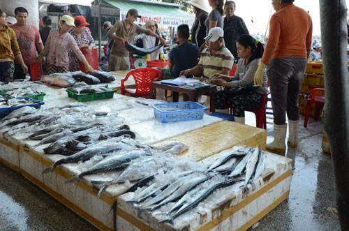 NỖ LỰC GỠ THẺ VÀNG THỦY SẢN (*): Bước chuyển mô hình nghề cá có trách nhiệm - Ảnh 1.