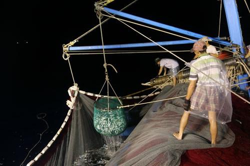 NỖ LỰC GỠ THẺ VÀNG THỦY SẢN (*): Bước chuyển mô hình nghề cá có trách nhiệm - Ảnh 2.