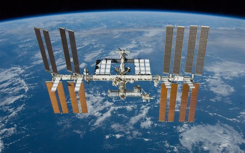 Thí nghiệm tạo ra thịt bò trong không gian - Ảnh 2.